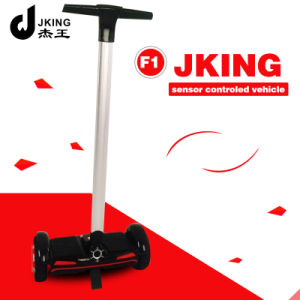Two Wheels Electric Balancing Scooter with Handle