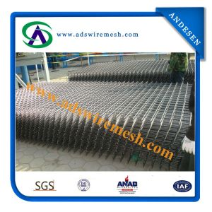Fine Quality Welded Wire Mesh Panel pictures & photos