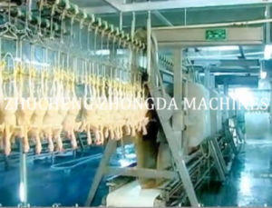 Full Set of Halal Chicken Abattoir Machine pictures & photos