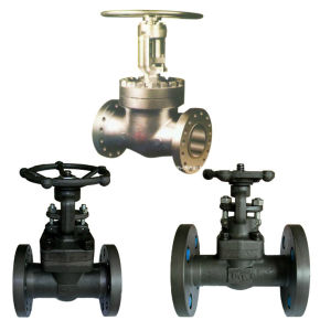 Gate Valve Forging pictures & photos