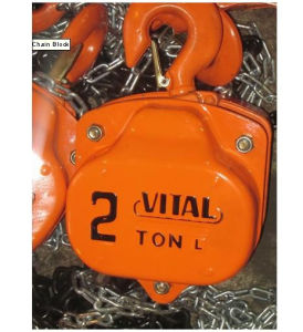 Vital Type Chain Block OEM with Factory Price