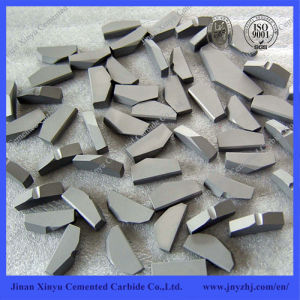 Yg8 Yg11c Tungsten Carbide Shield Cutter for Tbm Machine pictures & photos