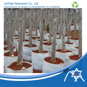 Nonwoven Planting Green Bag/Root Control Bag Jinchen 08-102 pictures & photos