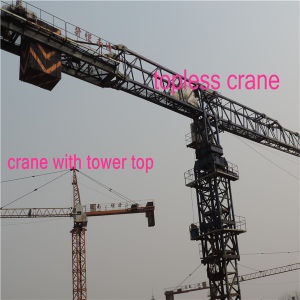 Hydraulic Crane Made in China by Hsjj Qtz5010 pictures & photos