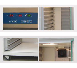 2 Steel Pallet Rack 64 Trays (40*60cm) Fermentation Room with Stainless Steel Outer and Inner pictures & photos