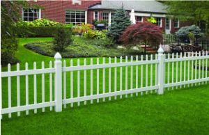 Garden Security Palisade Fence