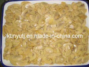 Canned Mushroom Slices with High Quality pictures & photos
