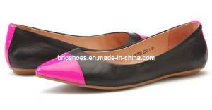 Attractive Superior Quality Women Flats