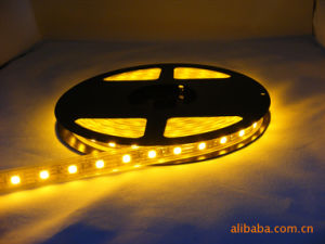 Mlight 110V/220V High Quality Flexible LED Strip Lights 5050 Green Color Changing Rope Light pictures & photos