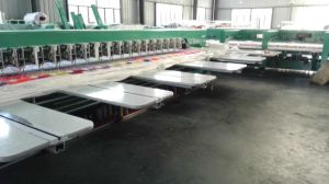 Big Chenille Embroidery Machine with Good Price for Cloth