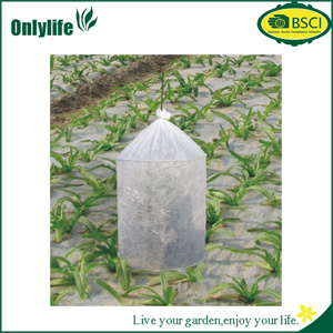 Onlylife Transparent PE/PP Non Woven Fiber Perforated Tomoto Cover