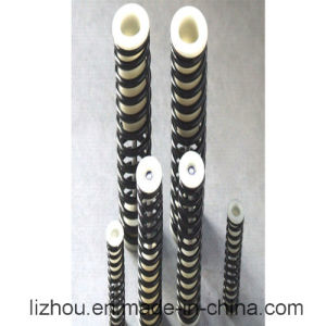 Assembly Spring for Shock Absorption Used in Auto