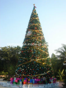 Large Outdoor Christmas Tree pictures & photos