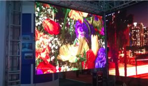 Enbon P3.91 500*1000mm Die-Casting Aluminum LED Display Panel for Indoor Rental pictures & photos