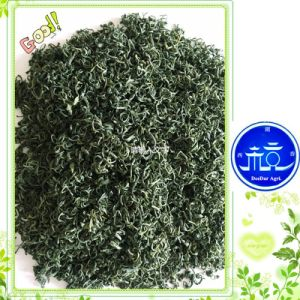 Good Price Green Tea in Summer pictures & photos