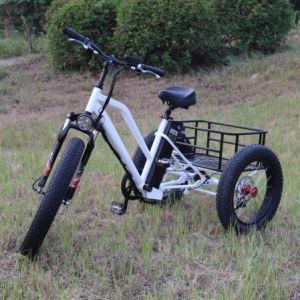 500W Three Wheel Electric Bicycle pictures & photos