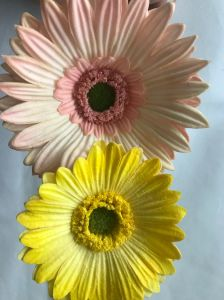 Single Daisy Bunch Stick Wedding Marriage Party House Decoration pictures & photos
