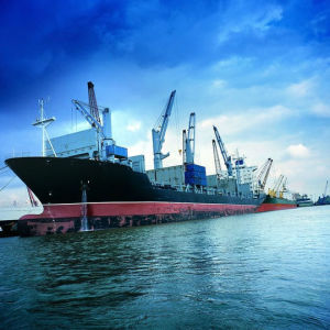 Sea/Ocean Shipping Freight Agent From China to San Juan/Puerto Ric