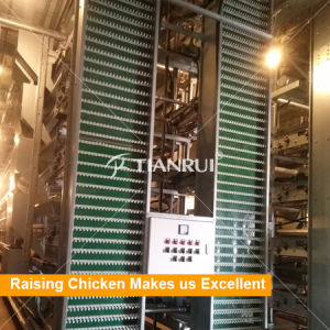 Automatic egg collecting machine for poultry farm egg chicken pictures & photos