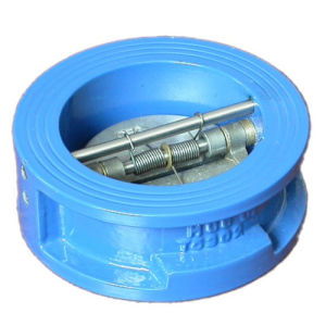 1.6 MPa DIN ANSI JIS Wafer Check Valve pictures & photos