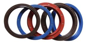 Hight Performance Outside Framework Oil Seal pictures & photos