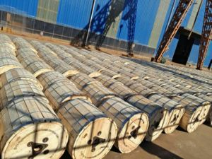Bare Conductor ACSR (Aluminum Conductor Steel Reinforced) Manufacturer pictures & photos