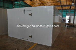 Modular Standard Cold Room with PU Panel pictures & photos