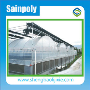 China Factory Price Agricultural/Commercial Film Greenhouse pictures & photos