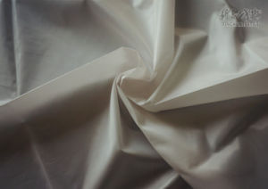 Polyester Taffeta Fabric with Bo and Heavy Cire (PT-340HC)