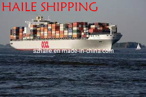 Competitive Price Sea Shipping to South Africa