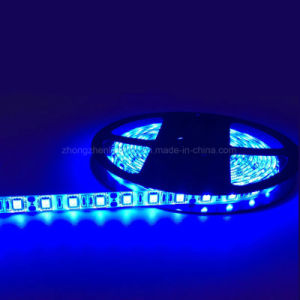 China 5050 Ce Rohs Dc 12v Led Strip Remote Controlled Battery