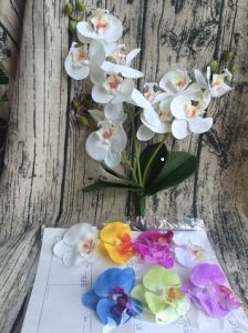 China real touch artificial flowers wedding decoration orchid real touch artificial flowers wedding decoration orchid artificial flower silk phalaenopsis flowers mightylinksfo