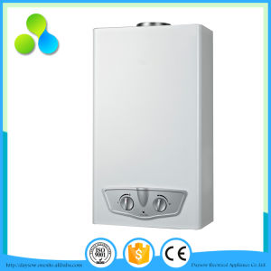 Senior Manufacture Flue Type Tankless Hot Water Heater