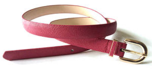 The Fashion Slimsy Spring Auturn Belt