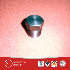 Hex 3000lbs A105 Carbon Steel Plug pictures & photos