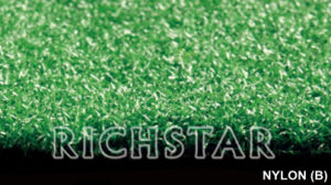 Artificial Grass, Golf Turf (Nylon B) pictures & photos