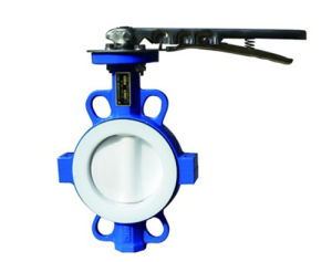 PTFE Lined Wafer Type Butterfly Valve pictures & photos