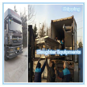 Slaughter Machinery Export From Zhucheng Furuida Machinery Factory pictures & photos