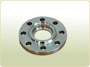 Hot Forging Forged Steel Flanges RF Ss304 pictures & photos