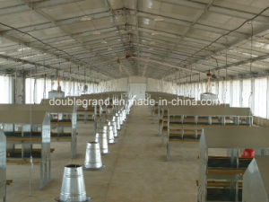 Prefab Steel Structure Poultry House, Chicken House, Farm Building pictures & photos