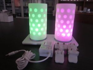 China Rechargeable Cordless LED Table Lamps - China LED Table Lamp
