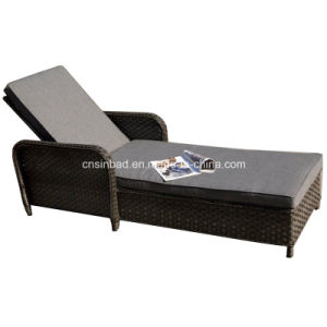 Indoor & Outdoor Rattan Furniture for Lounge with Armrest (5001)