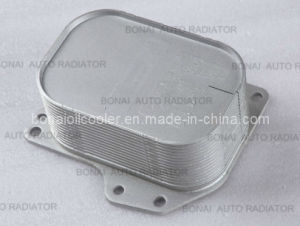 VW Oil Cooler 03n 117 021 with OE Quality pictures & photos