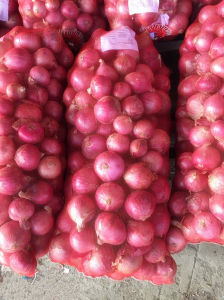 Huge Quantity Fresh Onion Hot Sale pictures & photos