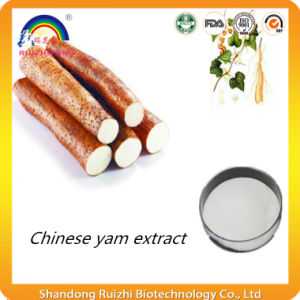 Wild Yam Extract with Diosgenin pictures & photos
