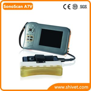 Handheld Veterinary Ultrasound for Backfat (SonoScan A7V) pictures & photos