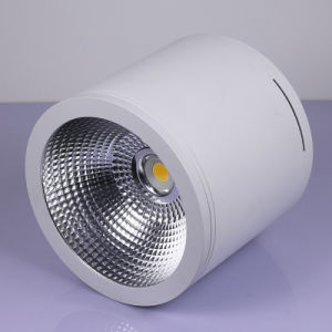 30W Surface Mounted Down Lights Ceiling Lighting LED Downlight pictures & photos