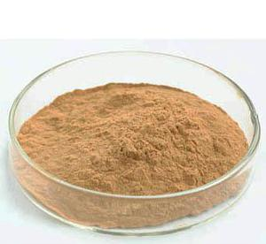 Shitake Mushroom Extract for Foods and Supplement pictures & photos