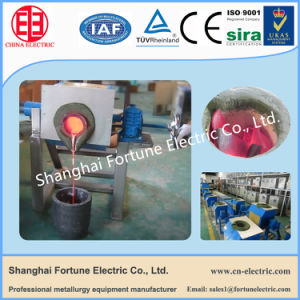 Induction Heating Small Type Gold Melting Furnace for Sale pictures & photos