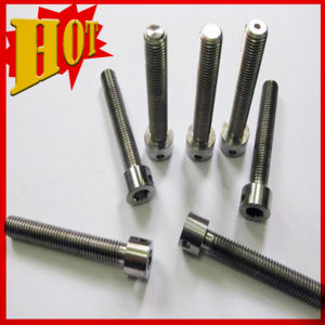 Kinds of Titanium Alloy Bolt in Stock